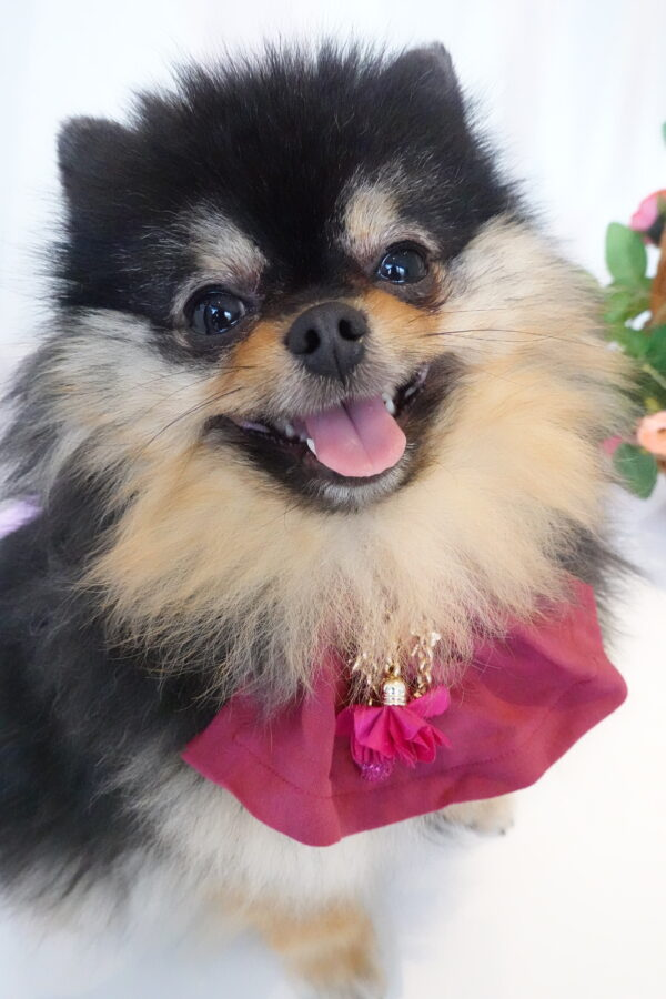 Handmade by Nala pink blossom jewelry